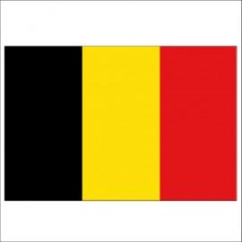 Pavillon de courtoisie - Belgique - 20 x 30 cm