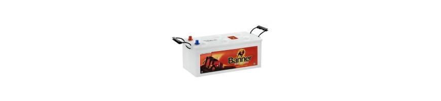 Batterie Buffalo Bull